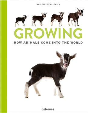 Growing: How Animals Come Into Our World