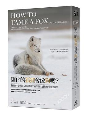 馴化的狐狸會像狗嗎? 蘇聯科學家的劃時代實驗與被快轉的演化進程